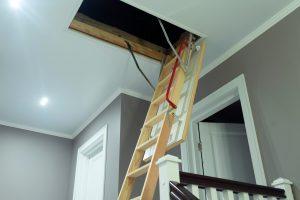 attic inspection