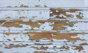 lead paint inspection shakopee mnq